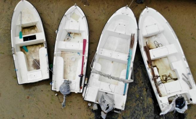Balıkçıların korkulu rüyası İzmit Körfezi'ni esir aldı