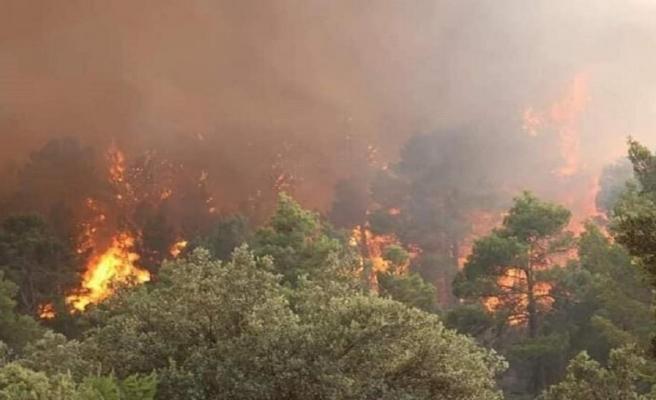 Binlerce Hektarlık Ormanı Yok Edecek Yangınla Uğraşırken Yağmurun Yağması ile Sevinen İtfaiye Ekipleri