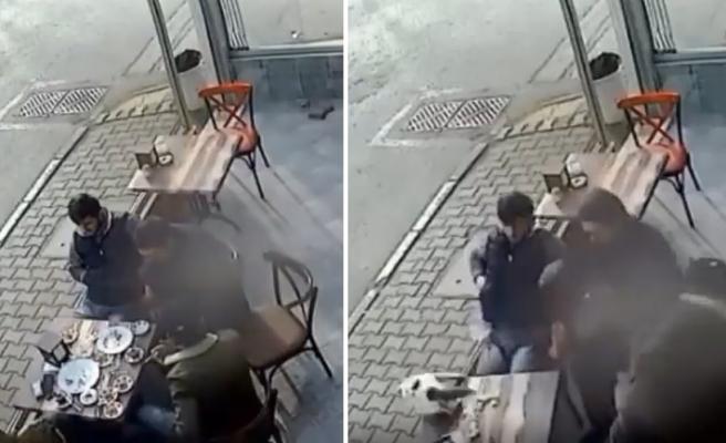 Bir Masada Oturup Çay İçen İnsanların Üzerine Düşerek Korku Dolu Anlar Yaşatan Kedi