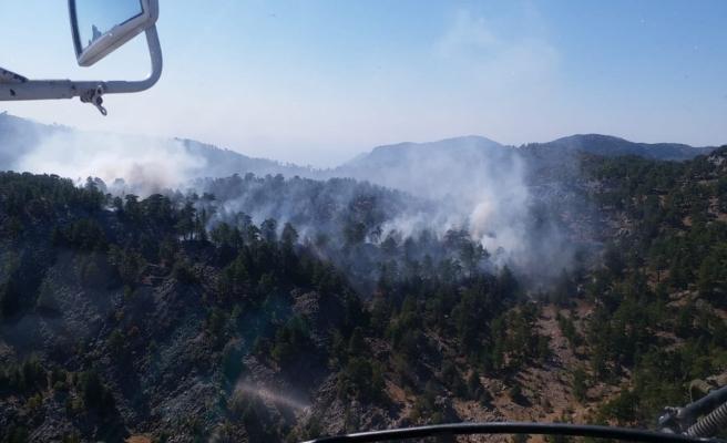 Bozyazı'daki yangında yaklaşık 10 dönüm ormanlık alan zarar gördü