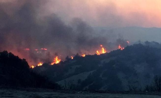 Canlı Blog | Denizli Buldan'daki Yangın Kontrol Altına Alındı