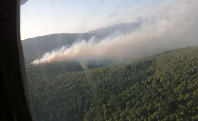 Çeşme'de Orman Yangını: Ekipler Karadan ve Havadan Müdahale Ediyor