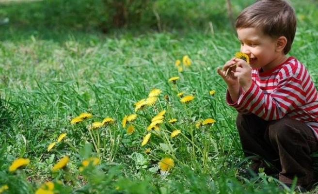 Çocukların sağlığını tehdit eden 3 yaz alerjisi