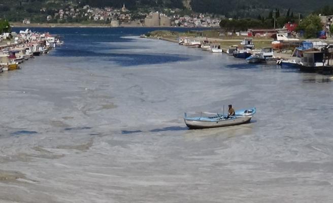 Deniz Salyası Yayılmaya Devam Ediyor: Çanakkale Boğazı'ndan Sonra Sarıçay da Müsilaj ile Kaplandı