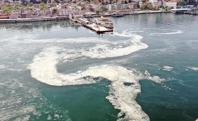 Doç. Dr. Saraçoğlu Açıkladı: Marmara Denizi'nde Yüzmek Cilt Hastalıklarına Neden Olur mu?