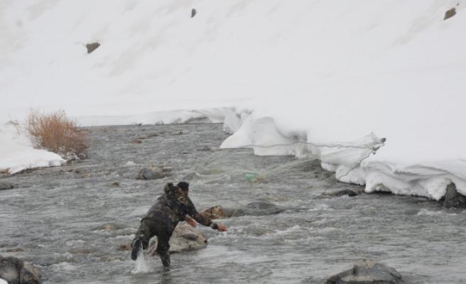 Donan dere yatakları çözülünce vatandaşlar buz gibi suda balık avına çıktı