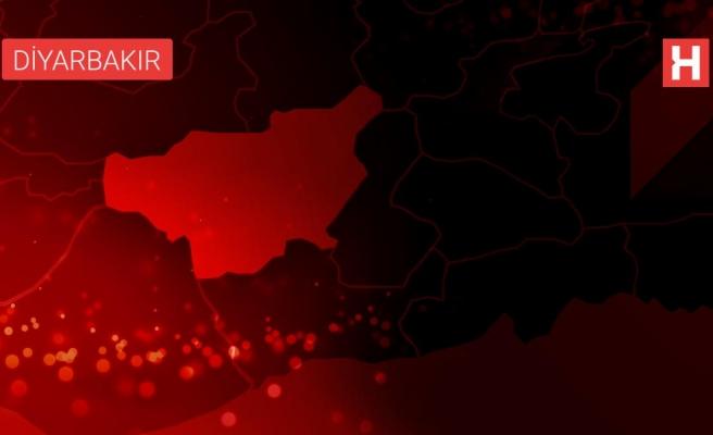 Ergani'de bağ bozumu başladı