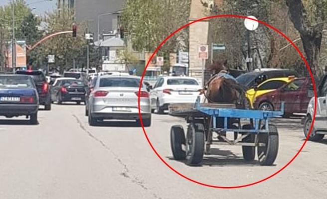 Erzurum'da Sahibinden Kaçan At Trafiğe Girdi, Çok Sayıda Araç Hasar Gördü