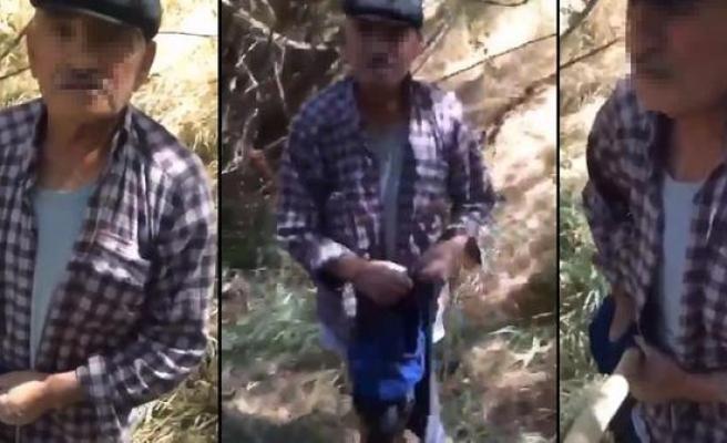 Eşi 'Engel Olamıyorum' Dedi: Sivas'ta 75 Yaşındaki Adam Köpeğe Tecavüz Ederken Yakalandı