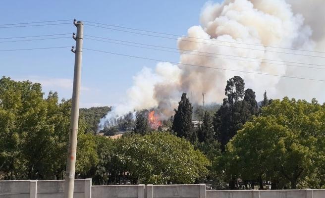 Foça'daki yangına müdahale devam ediyor