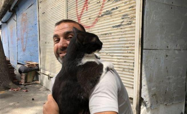 Her Sabah İnsan Dostunu İş Yerinin Kapısında Bekleyen ve Dostuna Sarılan Kedi