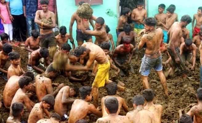Hindistan'da halk, inek dışkısını yüzlerine sürüp kartopu gibi birbirlerine atarak eğlendi