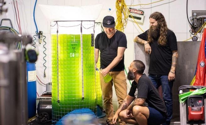 İklim Değişikliği ile Mücadele Eden Bu Bira Fabrikası Oksijen Üretiyor