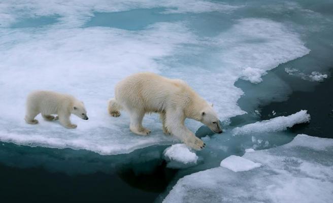 İnsanlığın Gezegen Üzerindeki Etkisi: Eriyen Buzullar Nedeniyle Dünyanın Ekseni Kaydı
