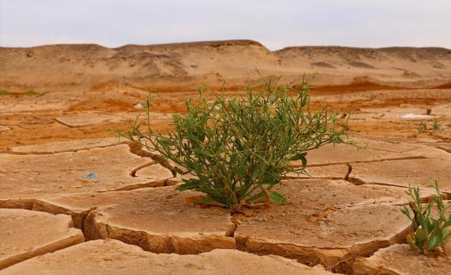 IPCC uyardı: 'İklim değişikliğini sınırlandırmak için derhal harekete geçilmeli'