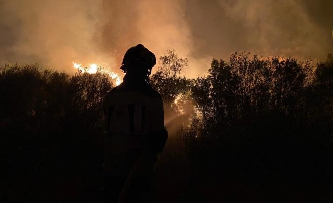 İspanya'da yılın en büyük yangını: 12 bin hektarlık ormanlık alan küle döndü