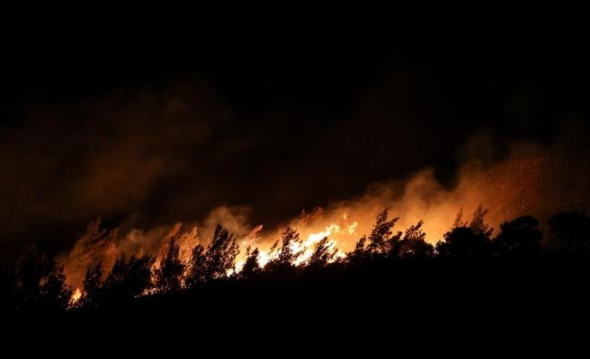 İzmir Foça'da Çıkan Orman Yangınına Müdahale Ediliyor