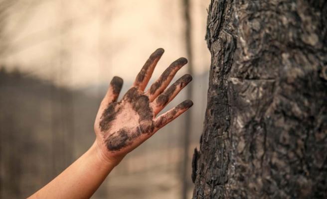 Kâbus 16 Gün Sürdü: Bakan Pakdemirli 'Tüm Yangınlar Kontrol Altında' Dedi