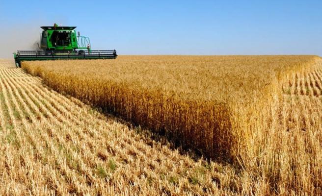 Kazakistan'da tarım arazilerinin yabancılara satılması ve kiralanması yasaklandı