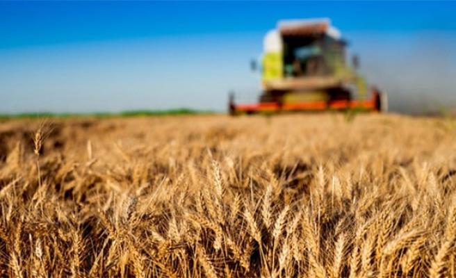 Kimsenin tohumuna yoksul değiliz