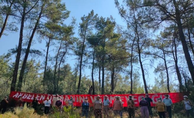 Maden İçin Gözden Çıkarılan Akbelen Ormanı'nda Ağaç Kıyımı Başladı, Köylüler Nöbet Tutuyor