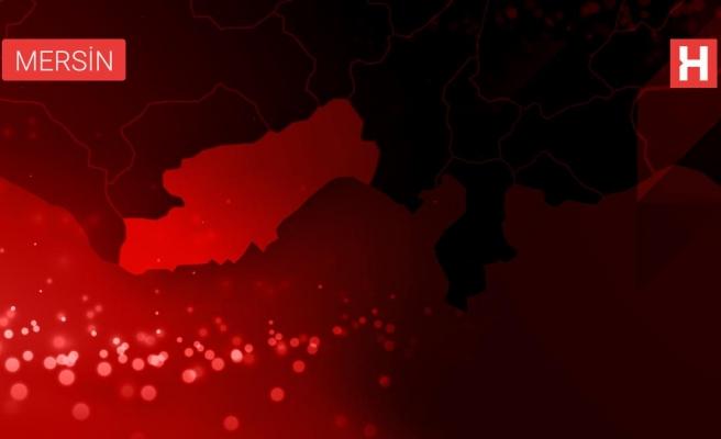 Mersin'de elektrik direğine çarpan otomobildeki 2 kişi yaralandı