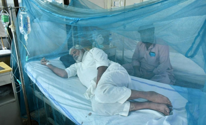 Pakistan'da Dang humması salgını endişesi! Bir günde 223 vaka tespit edildi