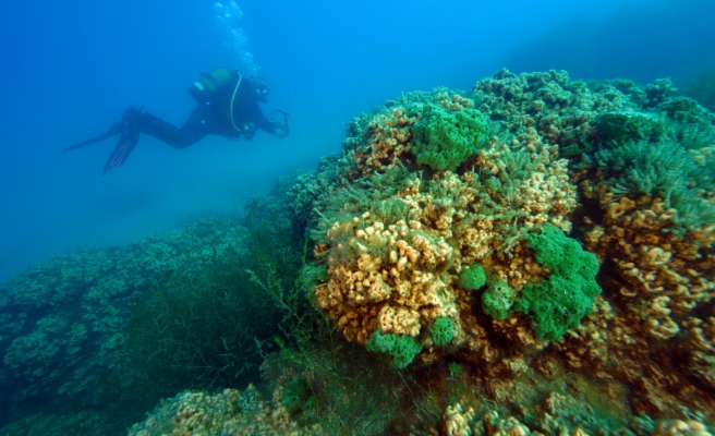 Salda Gölü'nün ekosistemi bilimsel çalışmalar için görüntülendi