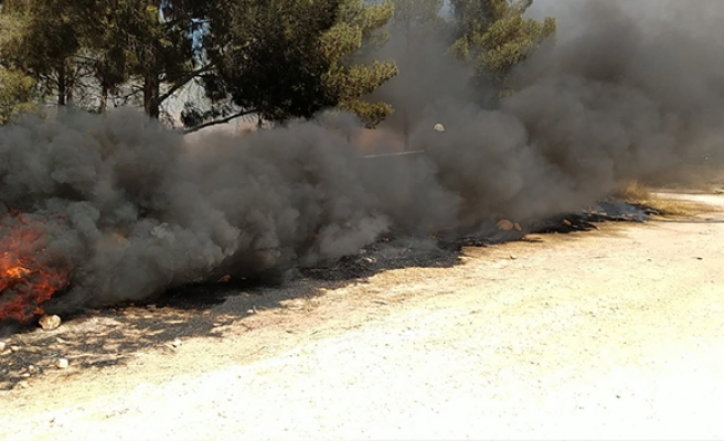 Şanlıurfa'da orman yangını büyümeden kontrol altına alındı