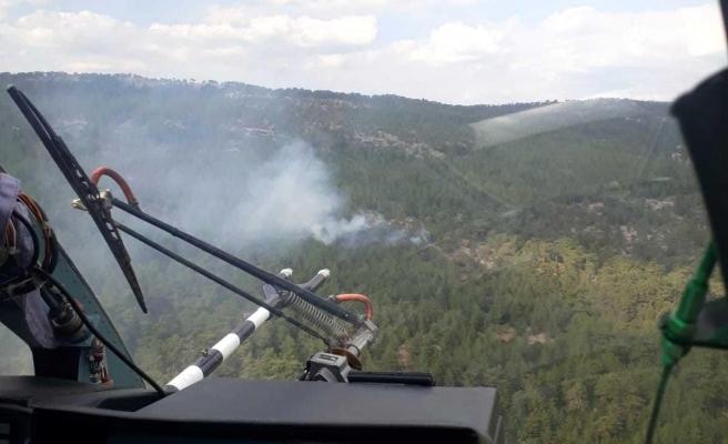Son dakika haberi: Menteşe'de ormana düşen yıldırım yangına neden oldu