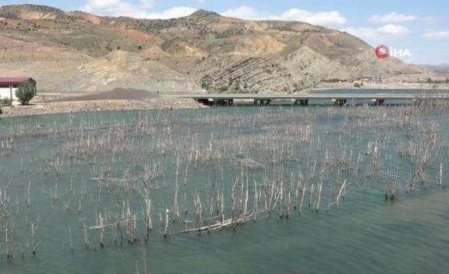 Suyu çekilen barajda ilginç görüntüler oluştu