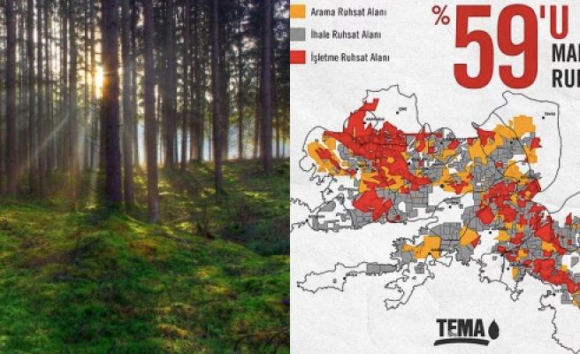 TEMA 'Muğla'yı Nasıl Bir Gelecek Bekliyor?' Diye Sordu: Ormanlık Alanların Yüzde 65'i Maden Ruhsatlıymış...
