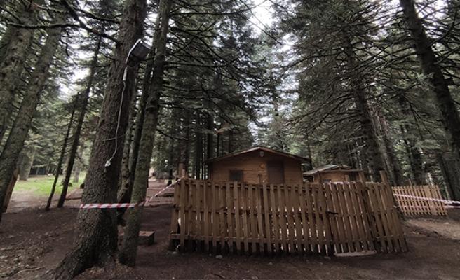 Uludağ'da sezon açıldı, orman evleri büyük rağbet görüyor