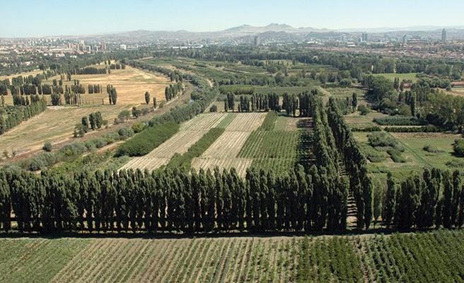 Ulusal Savunma Bakanlığı'na Kiralandı: Atatürk Orman Çifliği'nde 250 Bin Metrekarelik Alan Yapılaşmaya Açılıyor