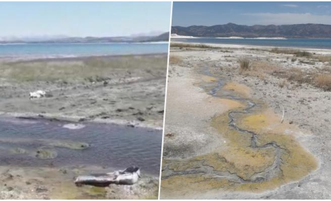 Uyarılar Dikkate Alınmadı! Köyün Kanalizasyon Suyu Hala Salda Gölü'ne Akıyor