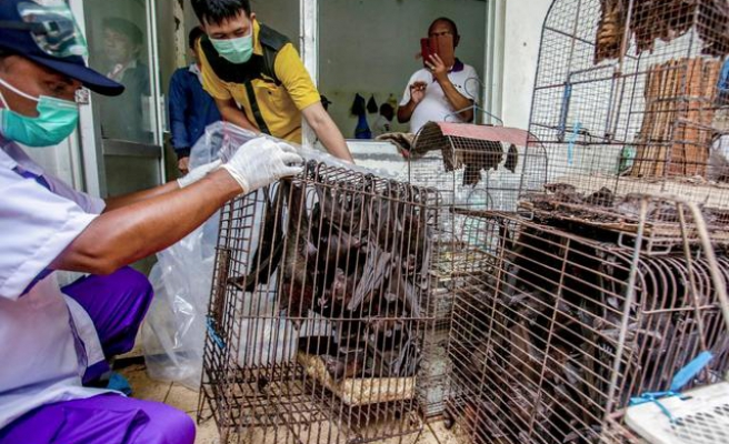 Wuhan'da İnceleme Yapan DSÖ Yetkilisi: Canlı Hayvan Pazarında Önemli İpuçları Bulduk