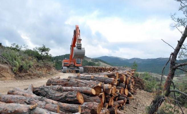 Yetki Turizm Bakanlığına Geçiyor: Koruma Altındaki Doğal SİT Alanları ve Milli Parklar İnşaata Açılıyor