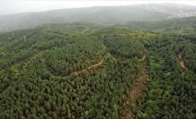 İki İlde Daha Ormanlara Girişler Yasaklandı