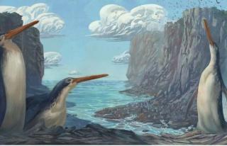1.5 metrelik penguen keşfedildi