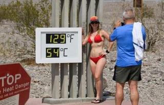 108 yılın en sıcak yazını yaşıyorlar! Tarım...