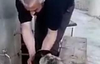 Abdest alırken elleriyle köpeğe su içirdi
