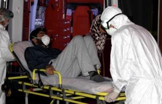 Erzurumda Kırım Kongo virüsü şüphesi