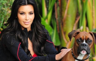 Kim Kardashian köpeğine yapay testis taktırdı