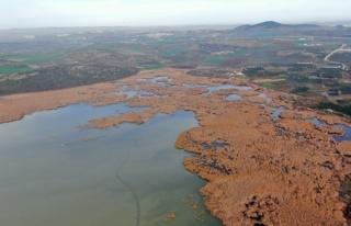 2600 yıllık geçmişi olan Uluabat Gölü'nde kuraklık...