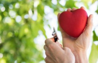 7 Nisan Dünya Sağlık Günü: Dünya Sağlık Günü...