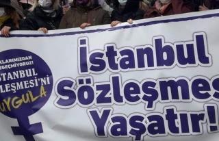77 Baronun Ortak Açıklaması: 'İstanbul Sözleşmesi...