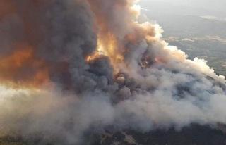 82 Yılda 106 Bin 603 Yangın Çıktı: Türkiye'de...