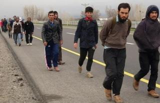 ABD, binlerce Afgan mülteciyi yerleştirmek için...