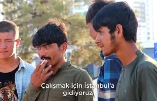 Afganistan'dan Türkiye'ye Kaçan Mülteciler: Her...