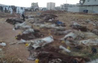 Afrin'de PKK'nın katlettiği kişilere ait toplu...